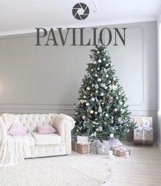 Успей сфотографироваться в новогоднем образе! Аренда фотостудии «Pavilion» со скидкой до 60%!